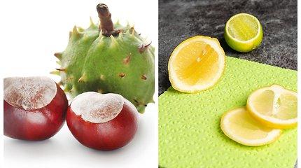Kaštonai ir citrusinių vaisių išspaudos: iš ko dar galima pasigaminti natūralių valymo priemonių ir skalbiklių?
