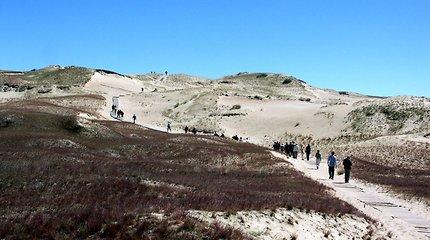 Kuršių nerijos nacionalinis parkas skelbia vasarą: buveinė pradeda veiklą Smiltynėje