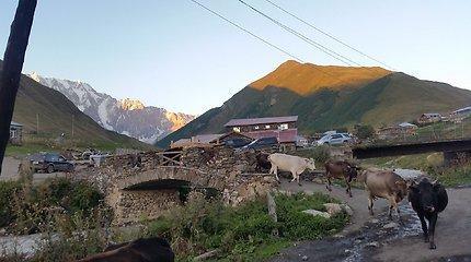Vienas atokiausių kaimų Kaukazo kalnuose – Ušgulis