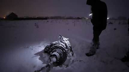 Siaubo filmas Rusijoje: aukos dukra po dviejų mėnesių aviakatastrofos vietoje dar rado žmonių kūnus