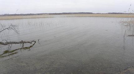 Galuonų ežeras ties Inturke Molėtų rajone