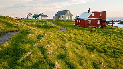 Flatėjaus sala Islandijoje, išrinkta geriausia pasaulyje