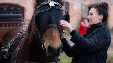 Nepažinti Kurtuvėnai: žirgų muziejus, stebuklingi šaltiniai ir Zoselės smuklė