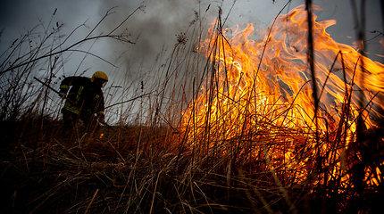 Aukščiausios klasės miškų gaisringumas – trečdalyje Lietuvos