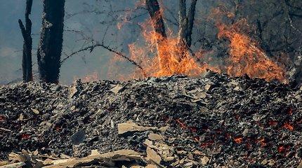 Tauragės rajone 10 kartų mišką padegęs vyras turės sumokėti beveik pusę milijono eurų