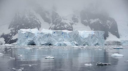 Antarktidoje užregistruota rekordinė daugiau kaip 20 laipsnių šiluma
