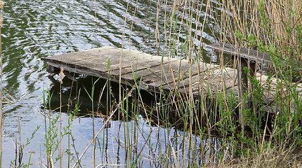 Kūdroje Plungės rajone rastas galimai nuskendęs vyras