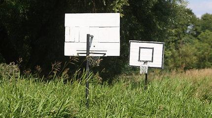 Žagarietiškas krepšinis Švėtės dumble
