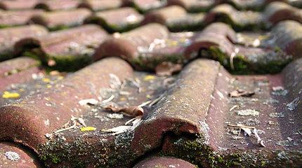 Nepavaldūs laikui: namų stogai tarpukariu ir medžiagos, atlaikiusios 100 metų