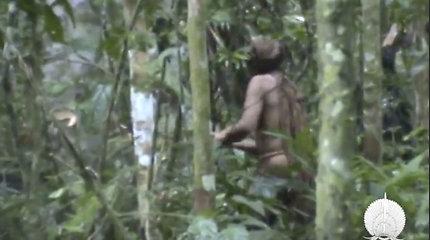 Atsiskyrėliškas Brazilijos čiabuvio gyvenimas – protestas prieš barbarišką jo genties išnaikinimą