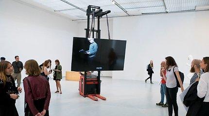 4-asis Vilniaus galerijų savaitgalis tyrinės parodinių erdvių kaitą