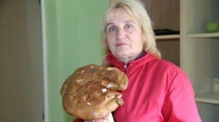 Šiaulietė rado įspūdingo dydžio 1,5 kg baravyką