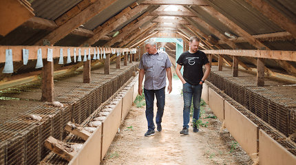 Audinių augintojų šeimos ūkis: nebėgantys nuo tėvų vaikai ir dešimtmečiais nekeičiami darbuotojai