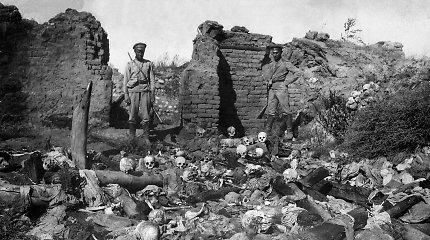 Turkija iškvietė JAV ambasadorių dėl Atstovų Rūmų sprendimo pripažinti armėnų genocidą