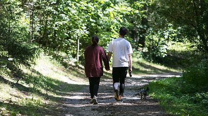 Sapieginės mišku susirūpinusius vilniečius ramina: čia medžiai pjaunami dėl kenkėjų