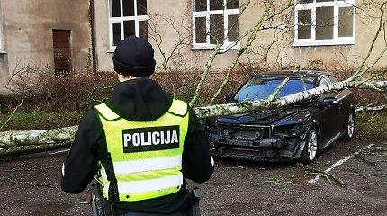 """Vėjas naktį vartė medžius: Vilniuje suknežintas """"Opel"""", Klaipėdoje – """"Volvo"""""""