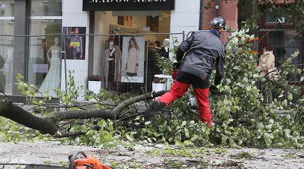 Šiaulietė prisirakino prie bulvare kertamo medžio – policininkai ją atrakino ir išnešė
