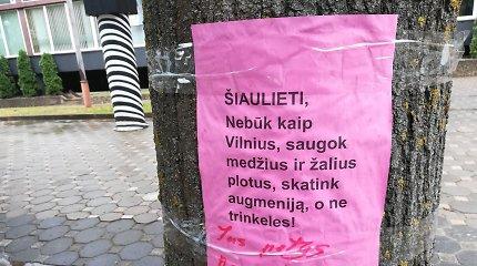 Šiaulių bulvare senųjų liepų gali nelikti – darbai prasideda jau kitą savaitę