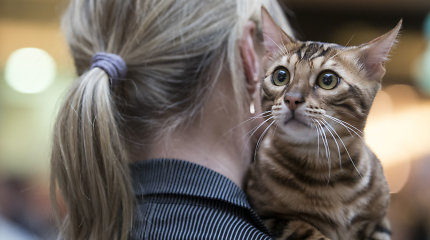 ES nesutinka dėl laukinių gyvūnų rūšių apsaugos reikalauti pavadėlių katėms
