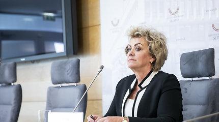 Tyrimą dėl I.Rozovos atliekantis Seimo komitetas išklausys buvusį VSD vadovą G.Griną