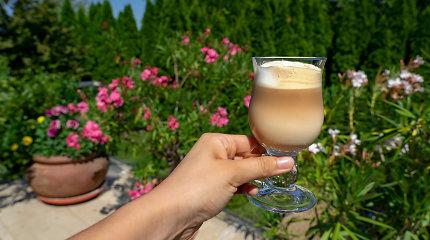 Žaidžiame kavinę namuose: 10 įvairių smagių kavos gėrimų receptų