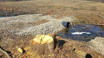 Miško upelyje Plungės rajone rastas vyro lavonas
