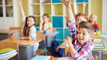 """Psichologė: """"Maždaug 40 procentų gabių vaikų dėl įvairių priežasčių nesimoko taip, kaip galėtų"""""""