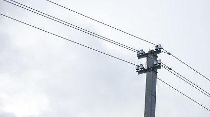 Dėl stipraus vėjo virto medžiai, be elektros buvo 10 tūkst. vartotojų
