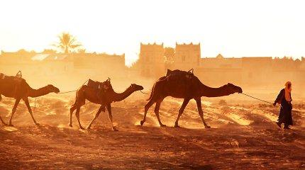 Magiškasis Marokas: senųjų tradicijų ir burtų keliais