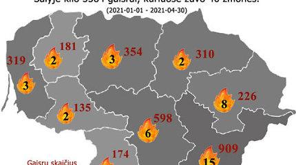 Šiemet sumažėjo gaisrų, tačiau žmonių juose žuvo daugiau