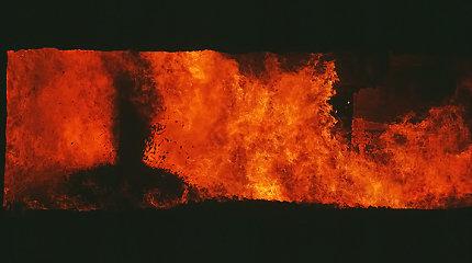 Kilus gaisrams Kretingos ir Šilalės rajonuose ketvirtadienio rytą žuvo du žmonės