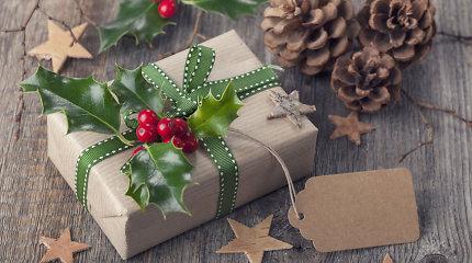 """Kokias knygas leidykla """"Tyto alba"""" rekomenduoja dovanoti Kalėdoms?"""
