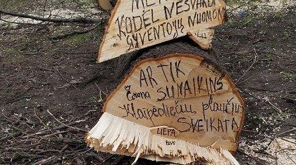 Aistros Klaipėdoje: gyventojai verkia dėl kertamų medžių su lizdais, savivaldybė ginasi