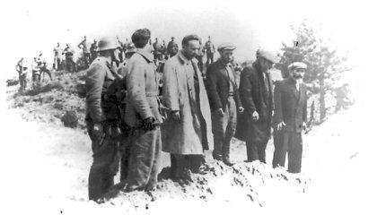 Seime norima pripažinti, kad Lietuva ir lietuvių tauta nedalyvavo Holokauste
