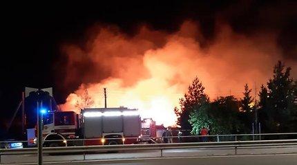 Gūsingas vėjas Karmėlavoje įplieskė didžiulį gaisrą, įtariamas padegimas