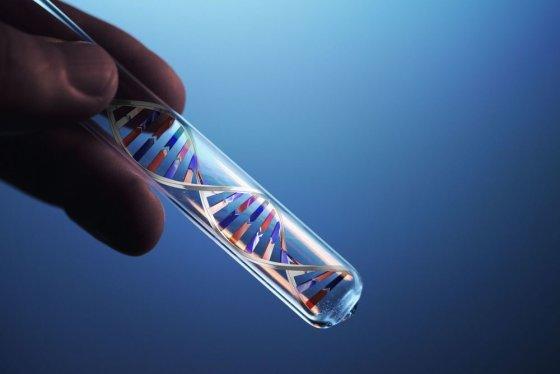 123rf nuotr./DNR grandinė mėgintyvėlyje