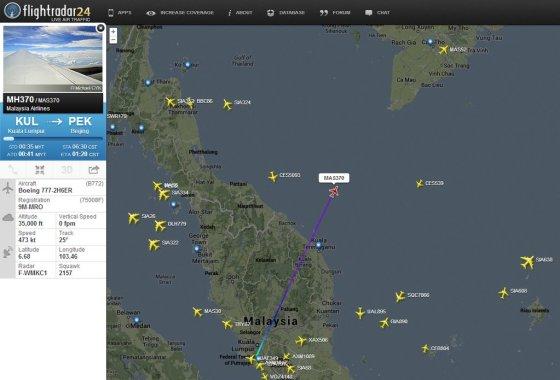 """""""Malaysia Airlines"""" lėktuvo nelaimės schema"""
