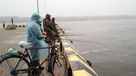 L. Sėleniėnės nuotr. /Žvejai šturmuoja Kuršmarių pakrantes – prasideda stintmetis