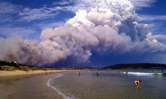 Scanpix nuotr./Tasmanijos salą vyraujant didžiulei kaitrai niokoja krūmynų gaisrai