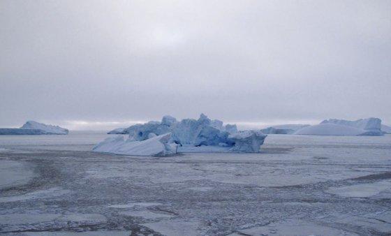 """Reuters""/""Scanpix"" nuotr./Arkties jūra"