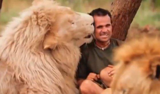 Kadras iš vaizdo įrašo/Liūtų užkalbėtojas Kevinas Richardsonas
