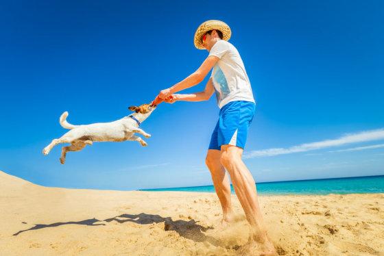 """""""Shutterstock"""" nuotr./Skraidanti lėkštė šunims"""