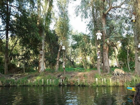 wikimedia.org nuotr./Lėlių sala