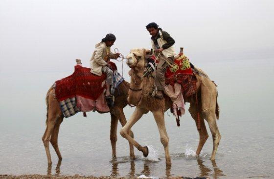 AP nuotr./Kupranugariai Jordanijoje