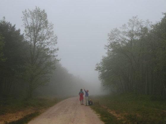 J. Aixner nuotr./Kiekvieną rytą renkamės savo kelią