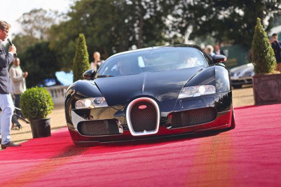 "Andriaus Lauciaus nuotr./""Bugatti Veyron"""