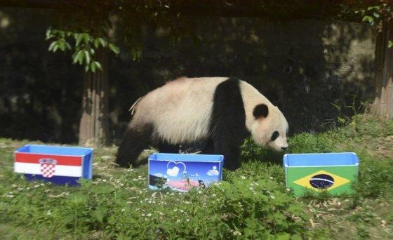 """""""Scanpix"""" nuotr./Panda"""