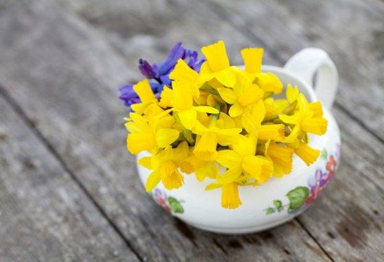 Shutterstock nuotr./Narcizai