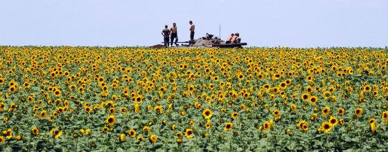 """AFP/""""Scanpix"""" nuotr./Ukrainos kariuomenė Rytų Ukrainoje"""