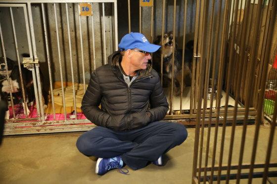 Organizatorių nuotr./Jeanas Claude'as van Damme'as šunų prieglaudoje